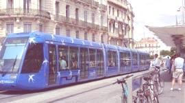 Los jóvenes prefieren tener un coche, en vez de viajar en un transporte público ecológico