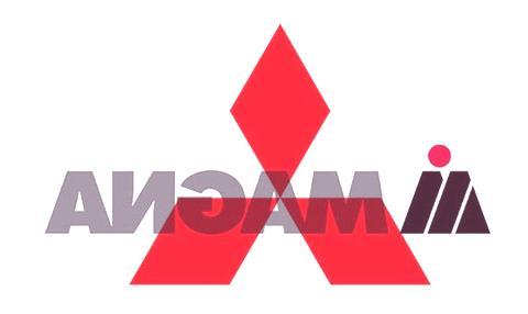 magna y mitsu-logo copy