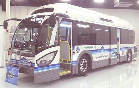 ecoride-bus1