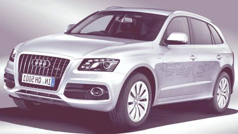 Audi-Q5-Hybrid-chico3
