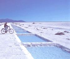 Argentina es portador de un gran caudal de litio